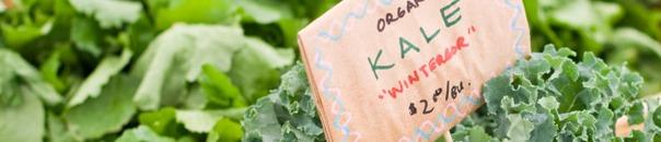 organic kale